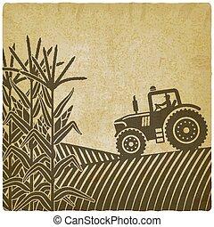 vindima, milho, trabalho, ilustração, campo, fundo, agrícola