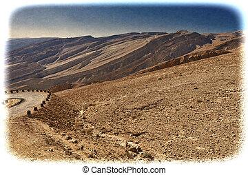 vindima, negev, israel., imagem, deserto