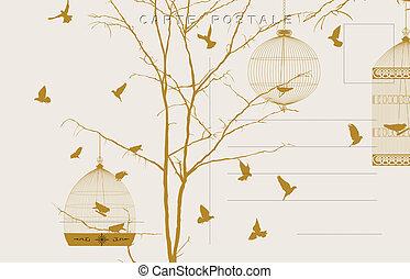 vindima, pássaros, cartão postal, 3