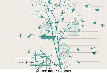 vindima, pássaros, cartão postal, 4