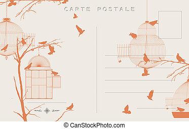 vindima, pássaros, cartão postal