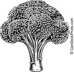 vindima, retro, woodcut, brócolos