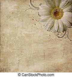vindima, roto, fundo, com, flores
