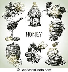 vindima, set., mão, mel, ilustrações, desenhado