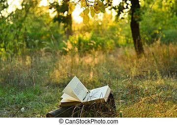 vindima, sob, árvore, livro poesia, ao ar livre