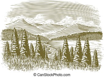 vindima, woodcut, selva