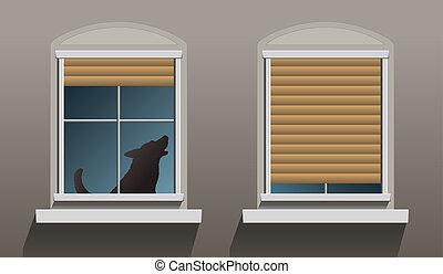 vinduer, suse, enlige, hund