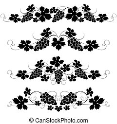 Vine - Decorative elements from the vine on a white...