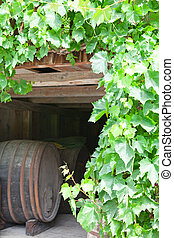 Vine making