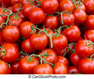 Vine ripened tomato clusters - Fresh picked tomato clusters ...