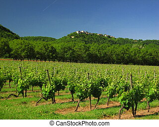 Valley of Lot; Perigord, Quercy, Midi-Pyrenees