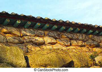 Vines on a stone background with antique roof.
