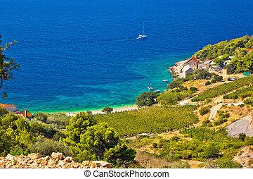 Vineyard and beach in picturesque village Farska bay, island...