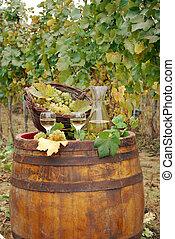 vineyard and white wine