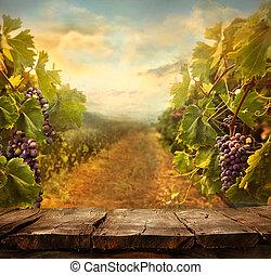 Vineyard design - Vineyard tabletop design. Wine background...
