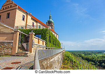 Vineyard in front of the castle M?lník Bohemia Czech Republic
