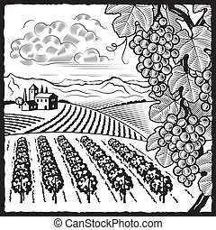Retro vineyard landscape in woodcut style. Black and white vector illustration with clipping mask.