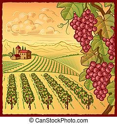 Vineyard landscape - Retro vineyard landscape in woodcut...