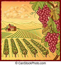 Vineyard landscape - Retro vineyard landscape in woodcut ...