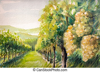 Landscape with vineyard. Picture created with watercolors.