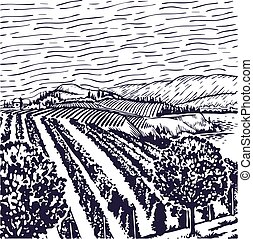 Vineyard line art, with rows of grape vines, with a grape...