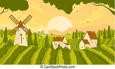 Vineyard rural summer or autumn sunset landscape scene with growing vine grapes, farm houses and windmill