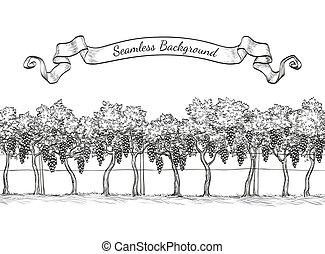 Vineyard seamless background. Vine sketch isolated on white....