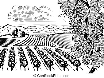 Retro vineyard valley landscape in woodcut style. Editable black and white vector illustration with clipping mask.