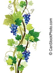 Vineyard - vine with space for text