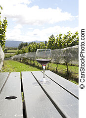 vineyard with glass of red wine