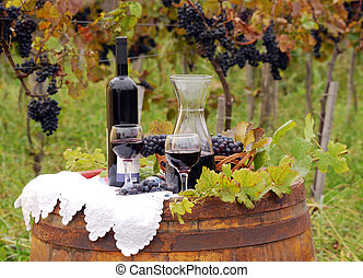 vineyard with grape and wine