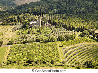 Vineyards and Estate In Umbria