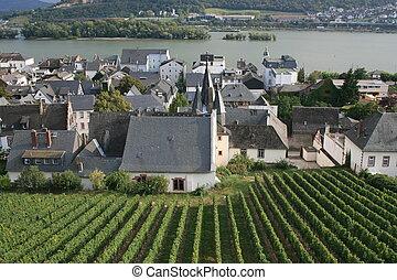 Rudesheim - Vineyards and town center of Rudesheim, Germany.
