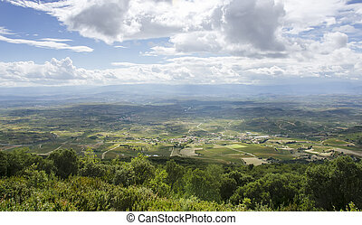 Panoramic view of vineyards in La Rioja