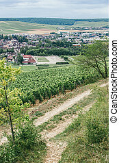 Vineyards of Burgundy, Chablis