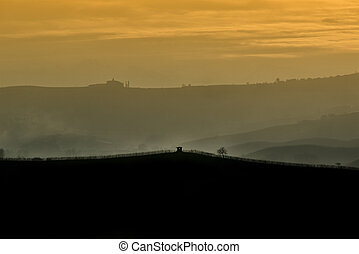 Vineyards on the hills in silhouette at sunset