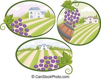vingård, elementara, design, synhåll