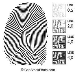 vingerafdruk, vector, lijnen