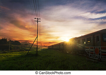 vinhøst, tog, hen, metal, jernbane, eller, jernbane, ind, formiddag, solfyldt dag, ind, thailand, idet, transport, logistik, begreb