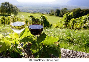 vinhedo, óculos, fundo, vinho