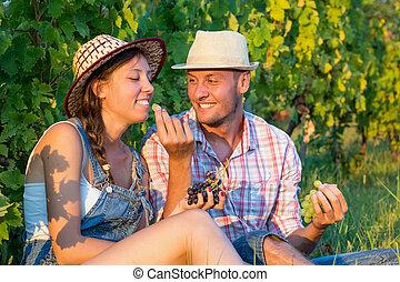 vinhedo, par compartilha, uvas, feliz
