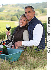 vinhedo, par, degustação vinho