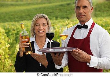 vinhedo, par, servindo, vinho