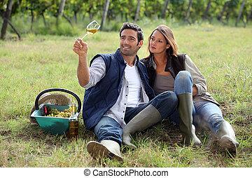 vinhedo, vinho bebida par
