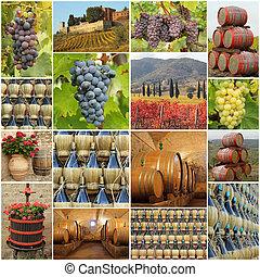 vinho, tradição, em, tuscany, série, de, imagens