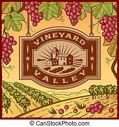 vinice, údolí