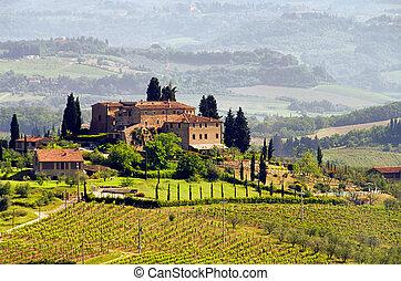 vinice, 03, toskánsko
