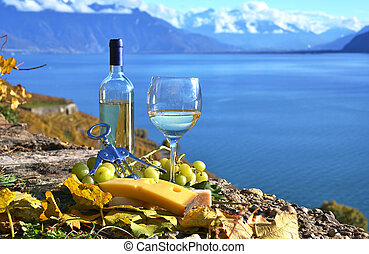 vino, e, cheese., lavaux, regione, svizzera