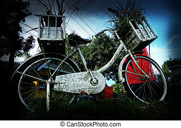 vinobraní, bicycle.