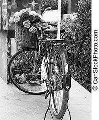 vinobraní, bicycle.
